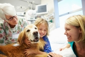Pet Therapy: quando un cane ci aiuta a guarire