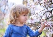 Rimedi naturali per prevenire i malanni e rinforzare il sistema immunitario