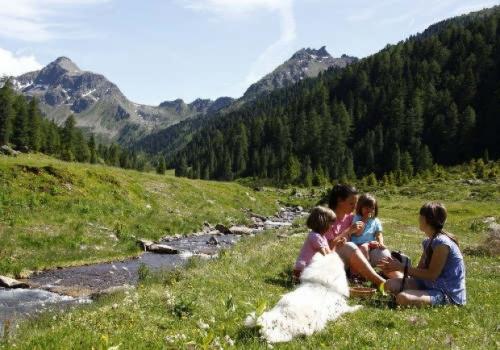 Dolomiti: la Val di Fiemme con i bambini