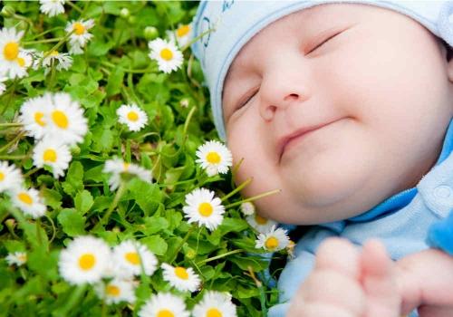 La camomilla per i neonati fa bene o fa male?